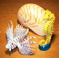 Lionfish and Seahorse